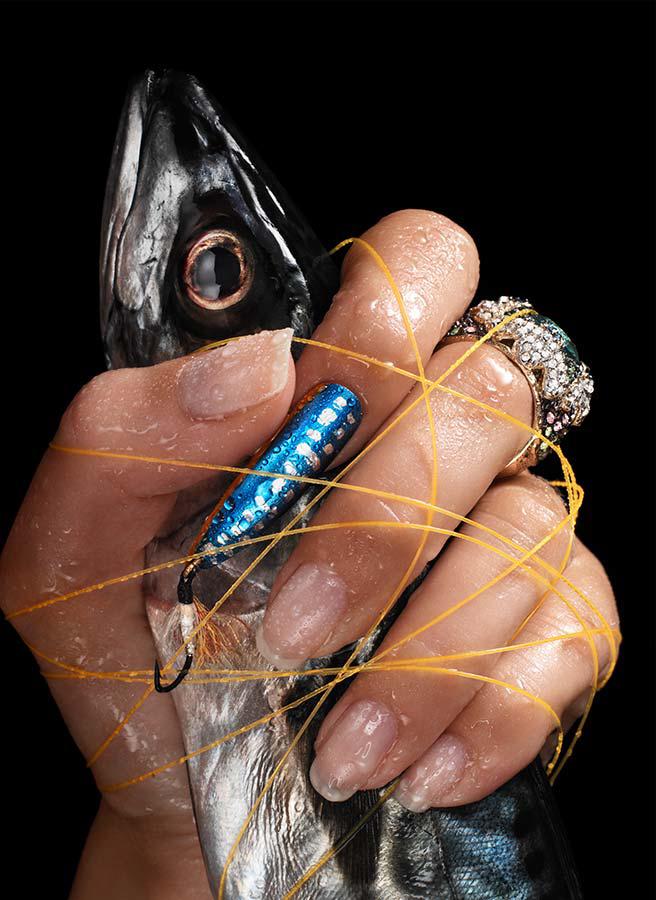 Mackerel closeup